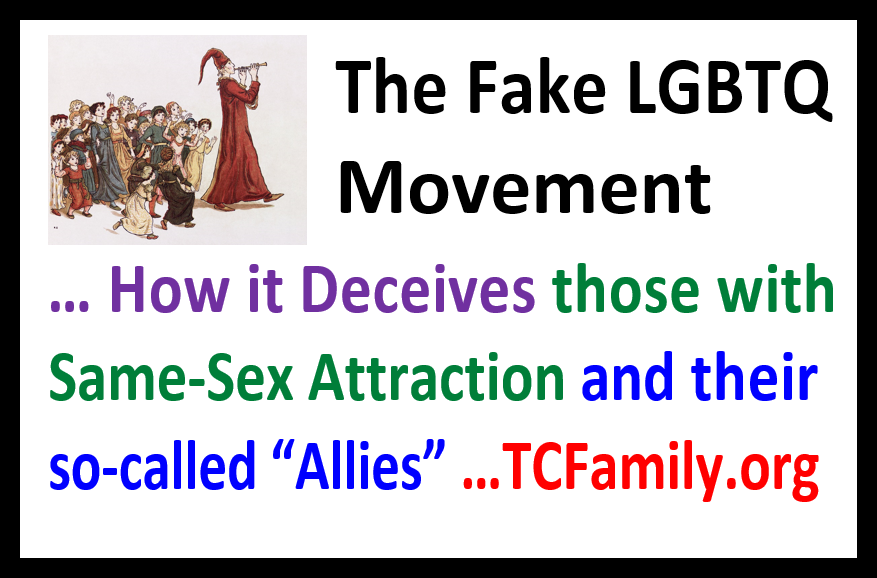 The Homosexual Propaganda and Media Manipulation Game